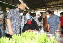 Buah Pisang Penyumbang Devisa Terbesar Kedua Untuk Indonesia Setelah Nanas